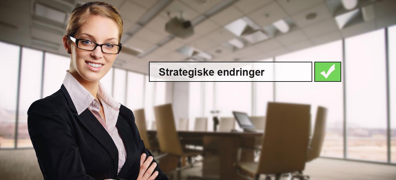 strategiske endringer interimleder